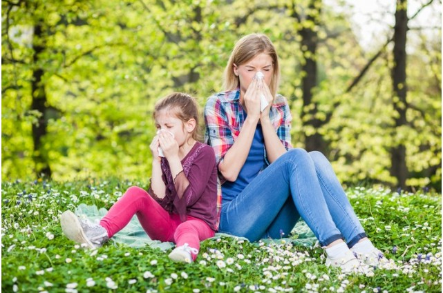Quels sont les différents anti-allergiques naturels ?